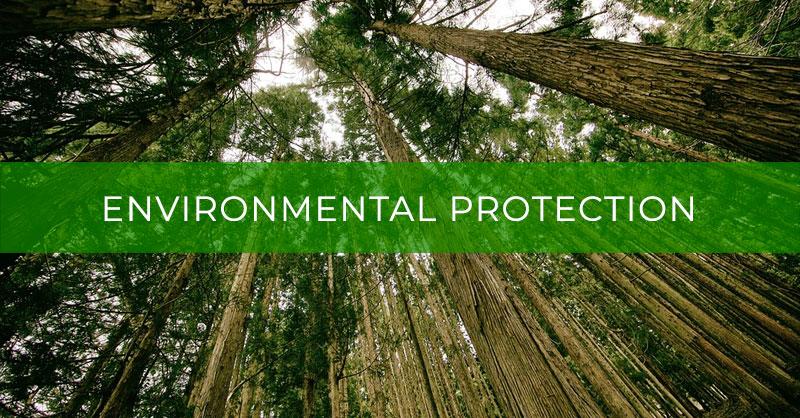 Environmental Protection – Топик Защита окружающей среды